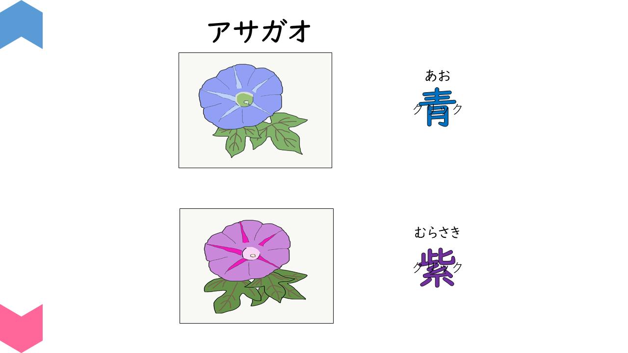 04002[sc]plants
