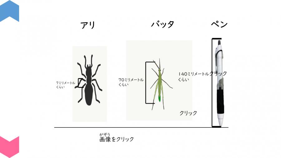 05001[理科]虫のすがたにくわしくなろう