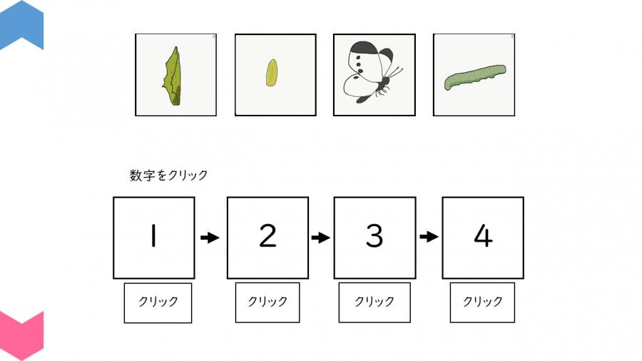 05003[理科]昆虫の育つ順番を確認しよう