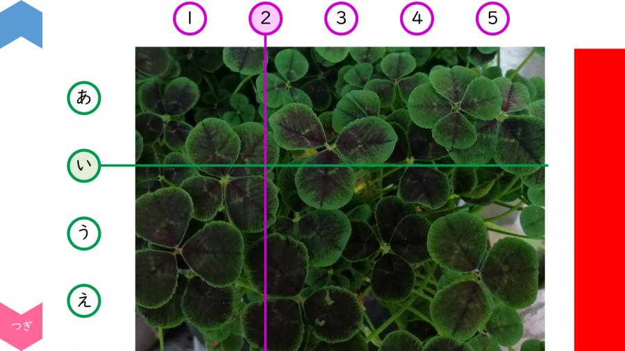 05011[理科]四つ葉のクローバー探し