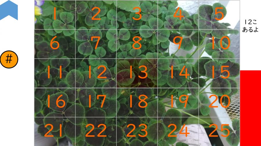 05012[理科]四つ葉のクローバー探し その2